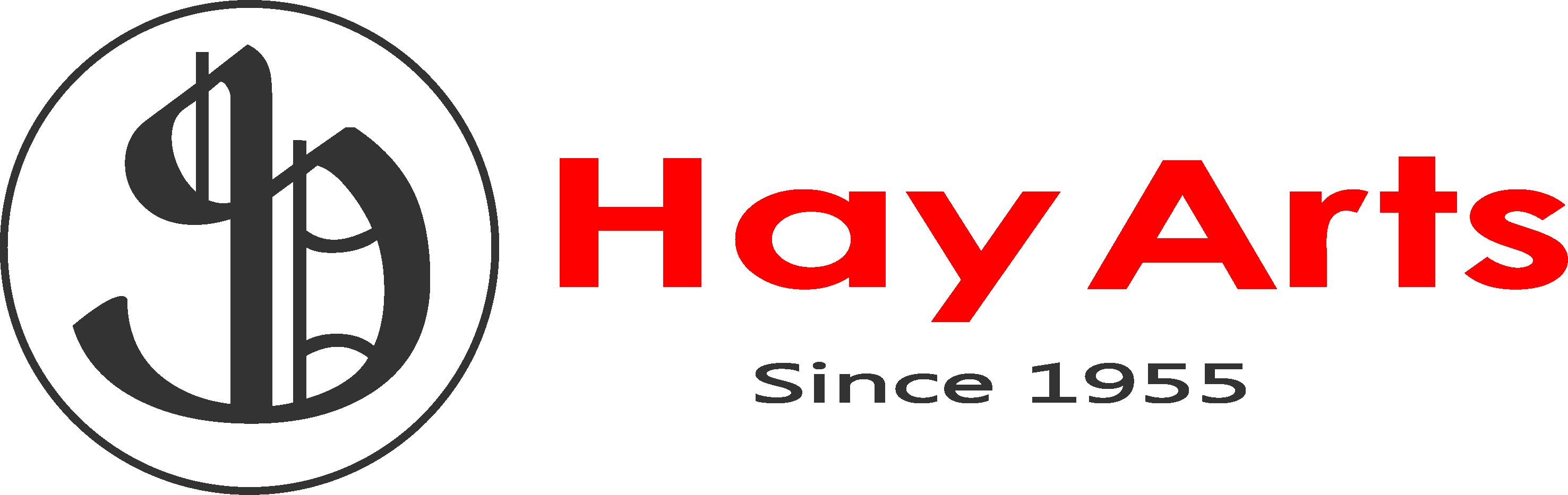 Hay Arts طراحی و تولید سکه های یادبود